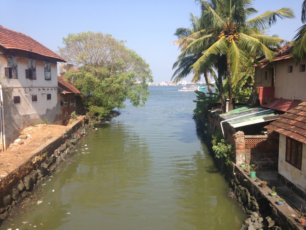 The view from Fort Kochi looking at downtown across the water.