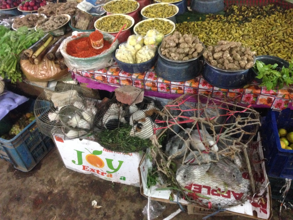 A market stall selling vegetables, silkworms, mice, hamsters, and rabbits (all food).