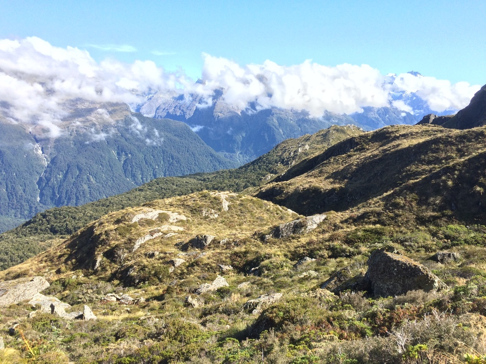 Hiking through the Routeburn. I swear this is where they chase the orcs in LOTR.