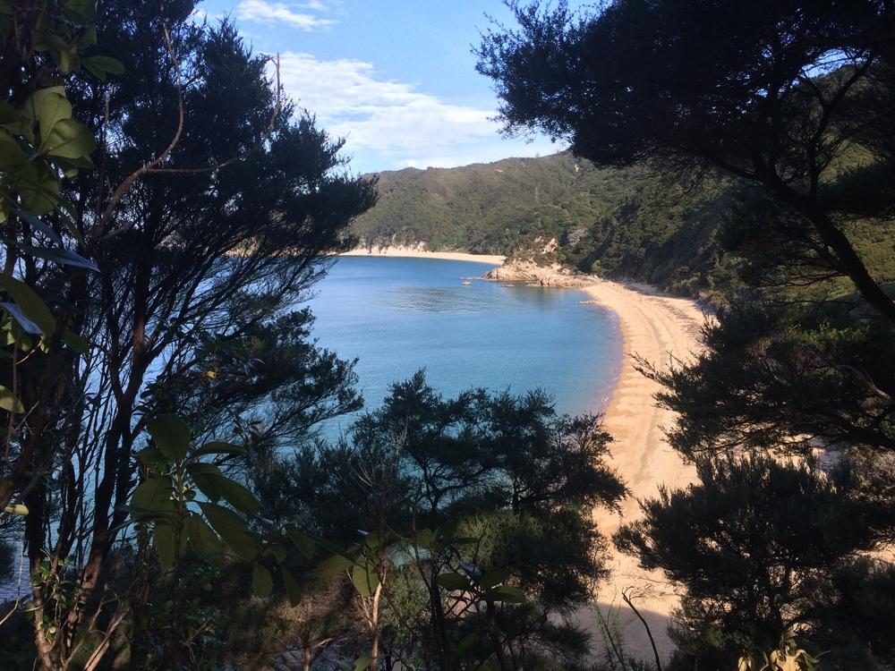 A sneak peak at a beach on the Abel Tasman walk