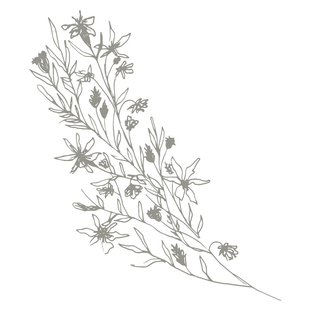 MB6 Floral.jpg