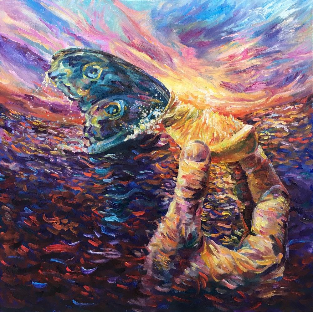Ocean Illusions