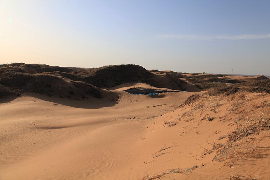 DaluDunes_0015_#2 Dune and Green.jpg