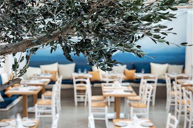 Le nouveaux restaurant Yaya est livré  #atelieruoa #hallesecretan #interiordesign #yaya #kalios #grece #paris #food  @yayarestaurant @juanarbelaezchef @mykalios