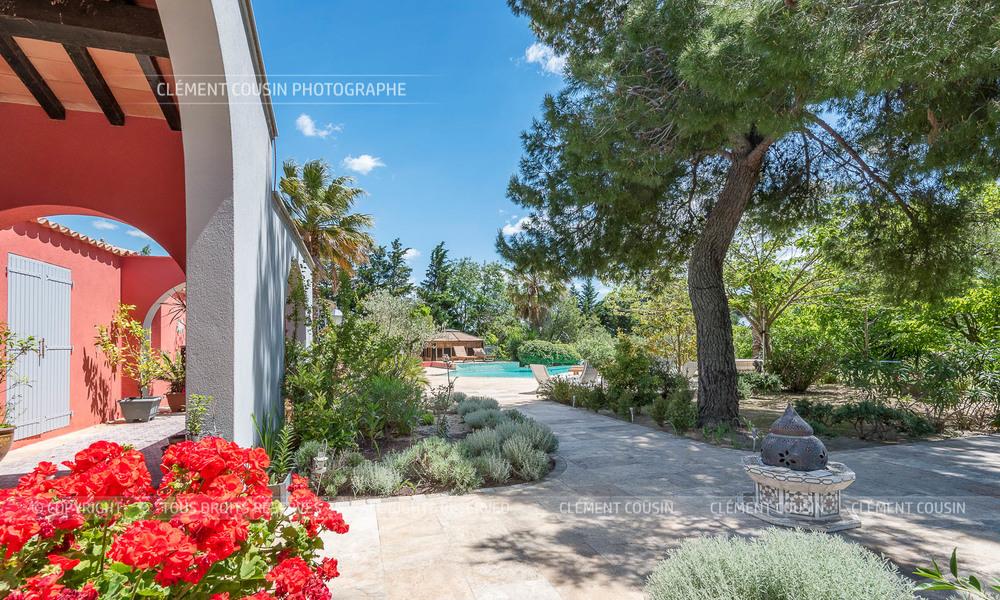 Mas de la montille piscine vignes aiguemortes-2.jpg