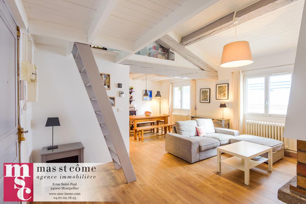 Mas Saint-Come-Appt T4 centre mezzanine-1.jpg