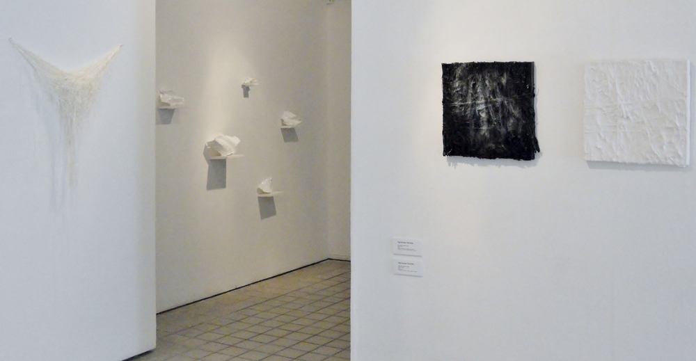 wa'ts sAsinhl q'aayaatl'hix Exhibition View, 2012 Photo: Anita Chowdry