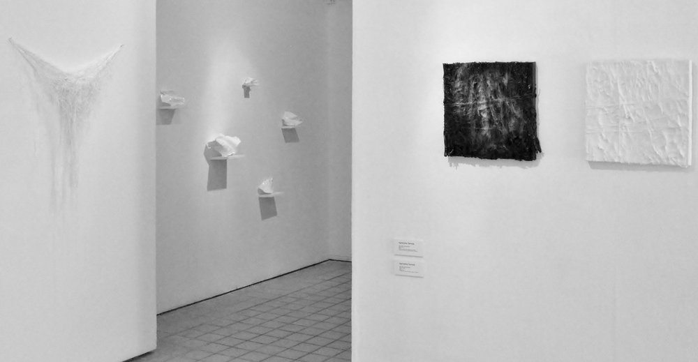 Vanishing Voices I  Exhibition View, 2012