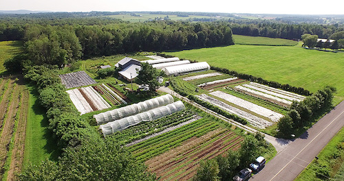 les-jardins-de-la-grelinette.jpg