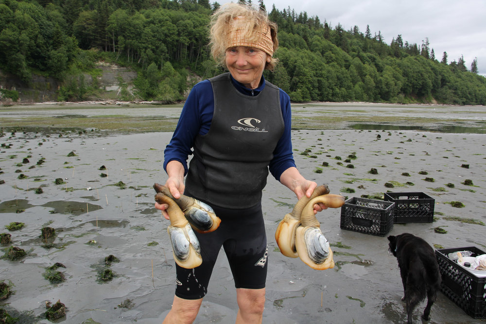 Helen Gunn with geoducks