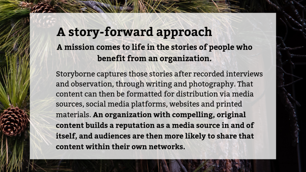 Bonnie-Obremski-Storyborne-Marketing-And-Project-Management-Services-Story-Forward-Approach.PNG