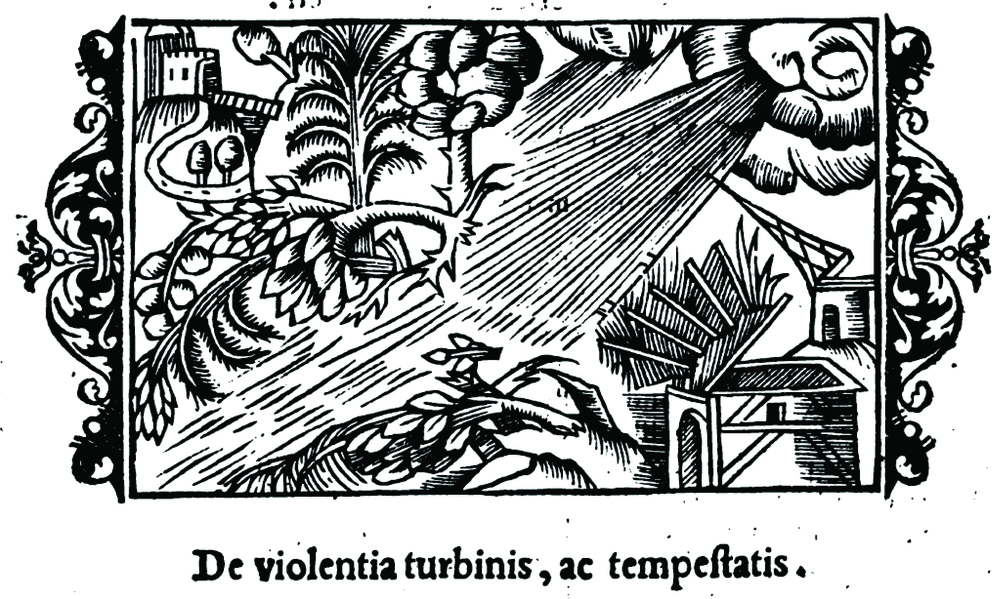 "Woodcut showing the effects of tornadoes and thunderstorms (Cap. XI ""De violentia turbinis, ad tempestatis"") from Historia de Gentibus Septentrionalibus  (A Description of the Northern Peoples) (Rome, 1555) a monumental work by Olaus Magnus (1490–1557) on the customs and folklore of the Nordic countries. This is one of the earliest depictions of the damages associated with tornadoes.  source: Magnus, O., 1555: Historia de Gentibus Septentrionalibus  (A Description of the Northern Peoples), Rome, 815 pp. [PDF, via Google Books]."