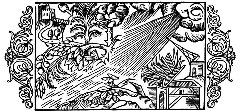 "Woodcut from the chapter ""On the violence of tornado, and the storm"" from the  History of the Nordic People  by Olaus Magnus. (source:  www.avrosys.nu )."