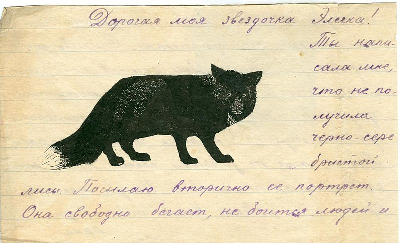 Drawing from a letter of Alexey Wangenheim to his daughter Eleonora. [via  Wikipedia Commons ]