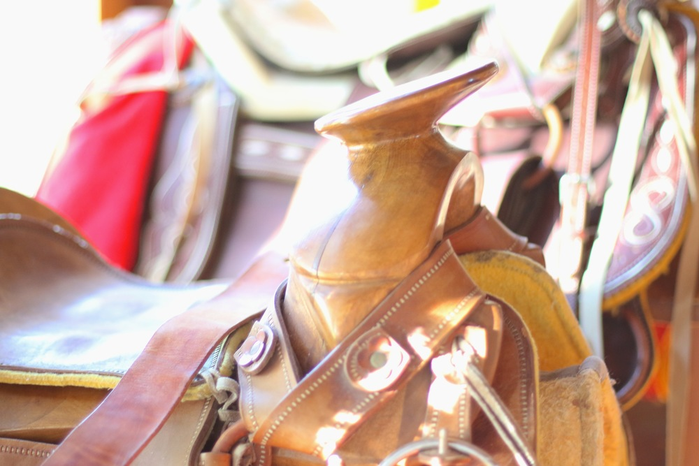 Saddle Detail.jpg