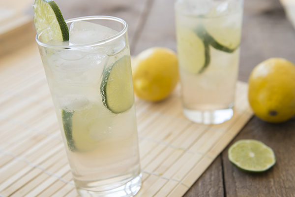 lemon, lime & bitters - chasing saturdays