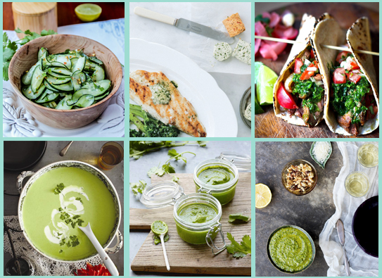 cilantro recipe roundup - chasing saturdays