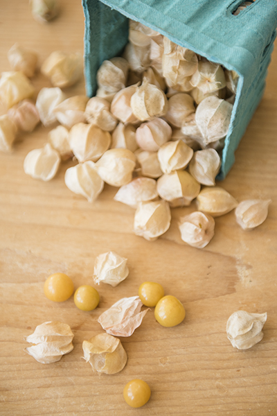 husk tomatoes or ground cherries - chasing saturdays