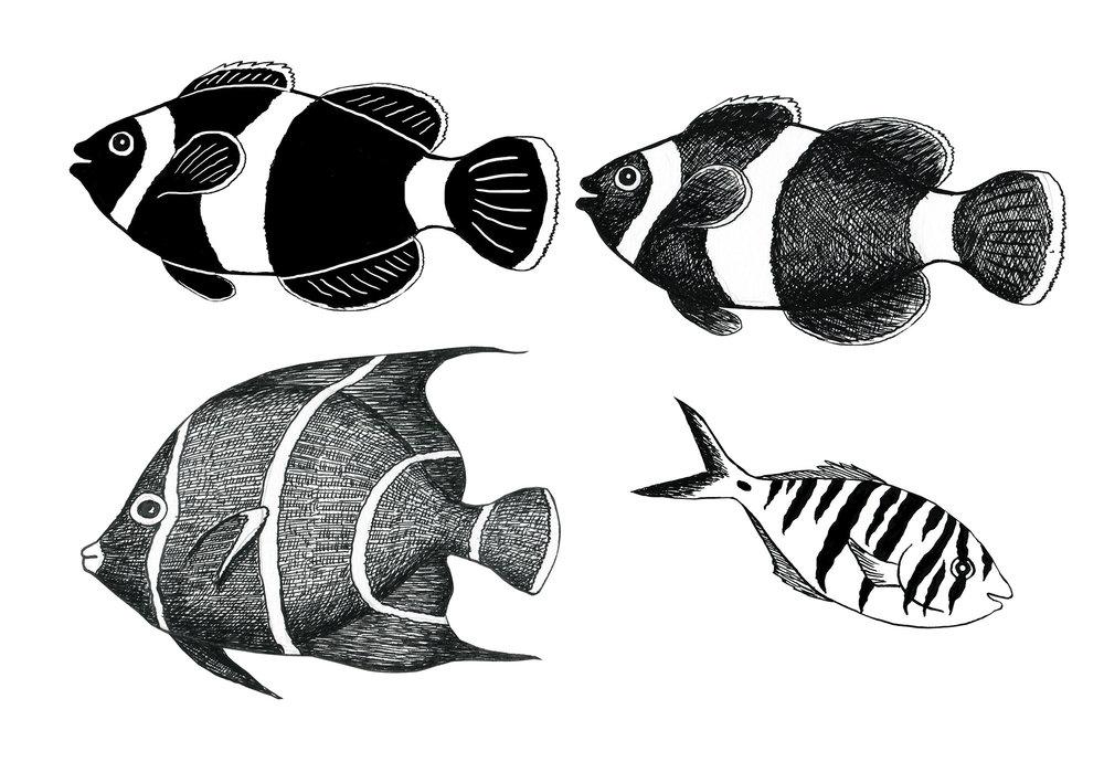 4fish2.jpg