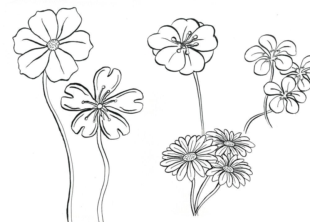 Flowers+1.jpg