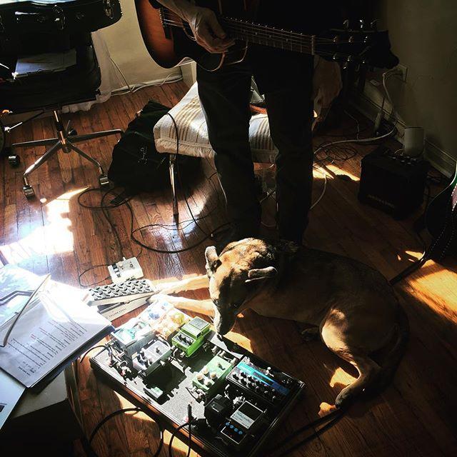 Bella digs Alan's rig. #guitartech