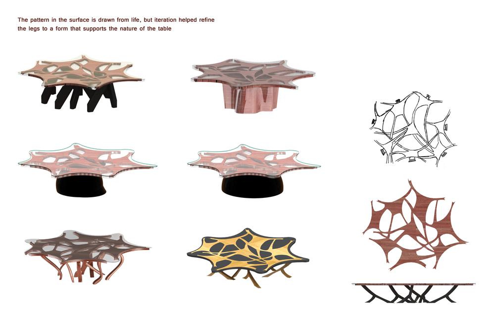 MINDSPACE iterations Brian Lieb