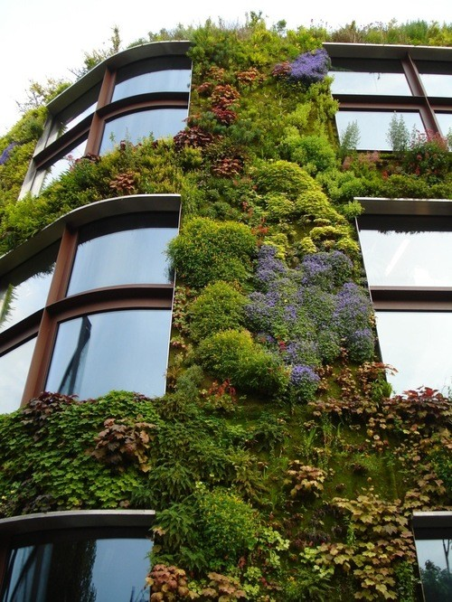 vertical gardens!  idealhouse:  Building with a vertical garden http://www.mixcloud.com/ladykier/  https://www.facebook.com/pages/miss-Lady-Kier/296808489716?fref=ts