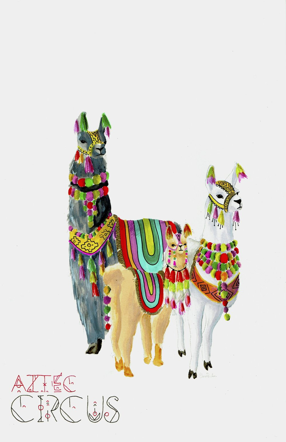 Aztec Circus Alpaca.jpg
