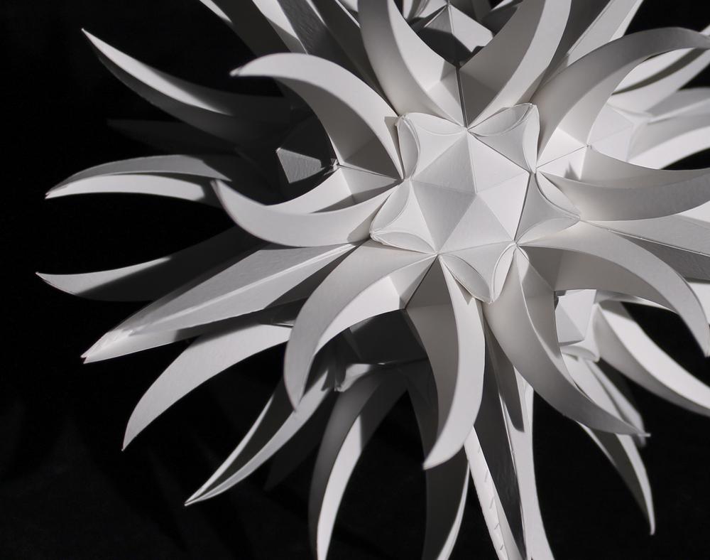 Biomimicry |Fall 2011