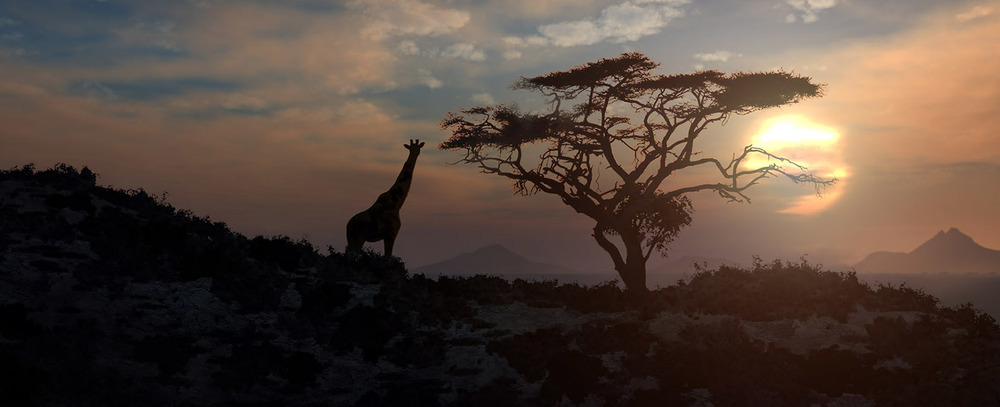 African-grassy-sunset-matte-Animation.jpg