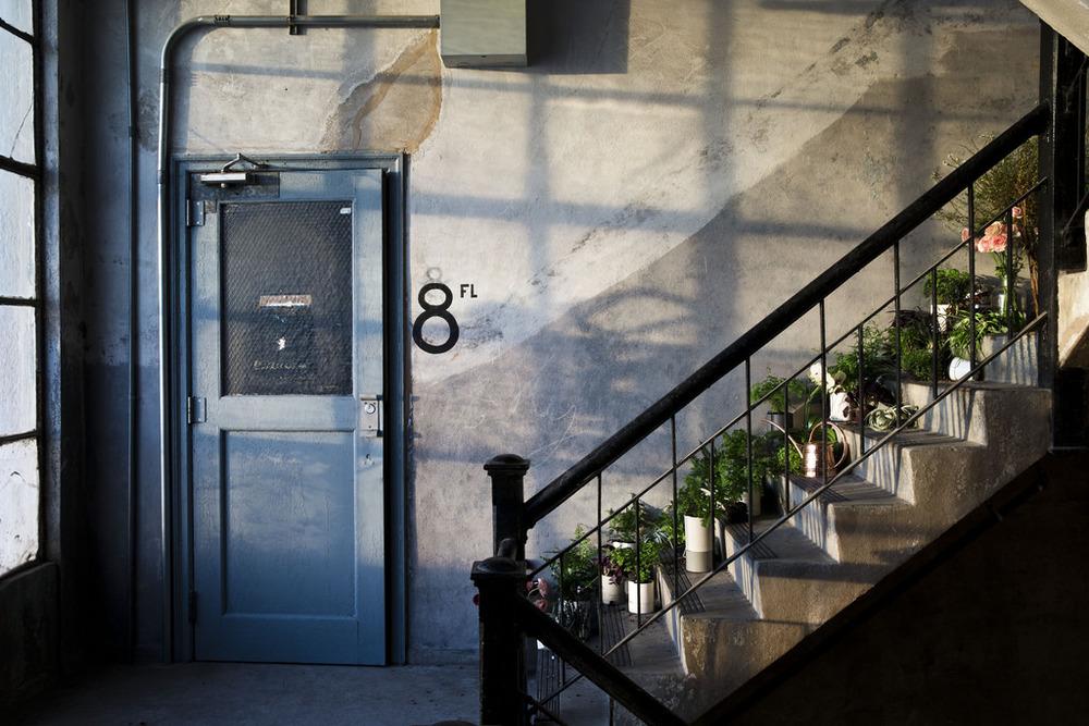 Brooklyn-6.jpg