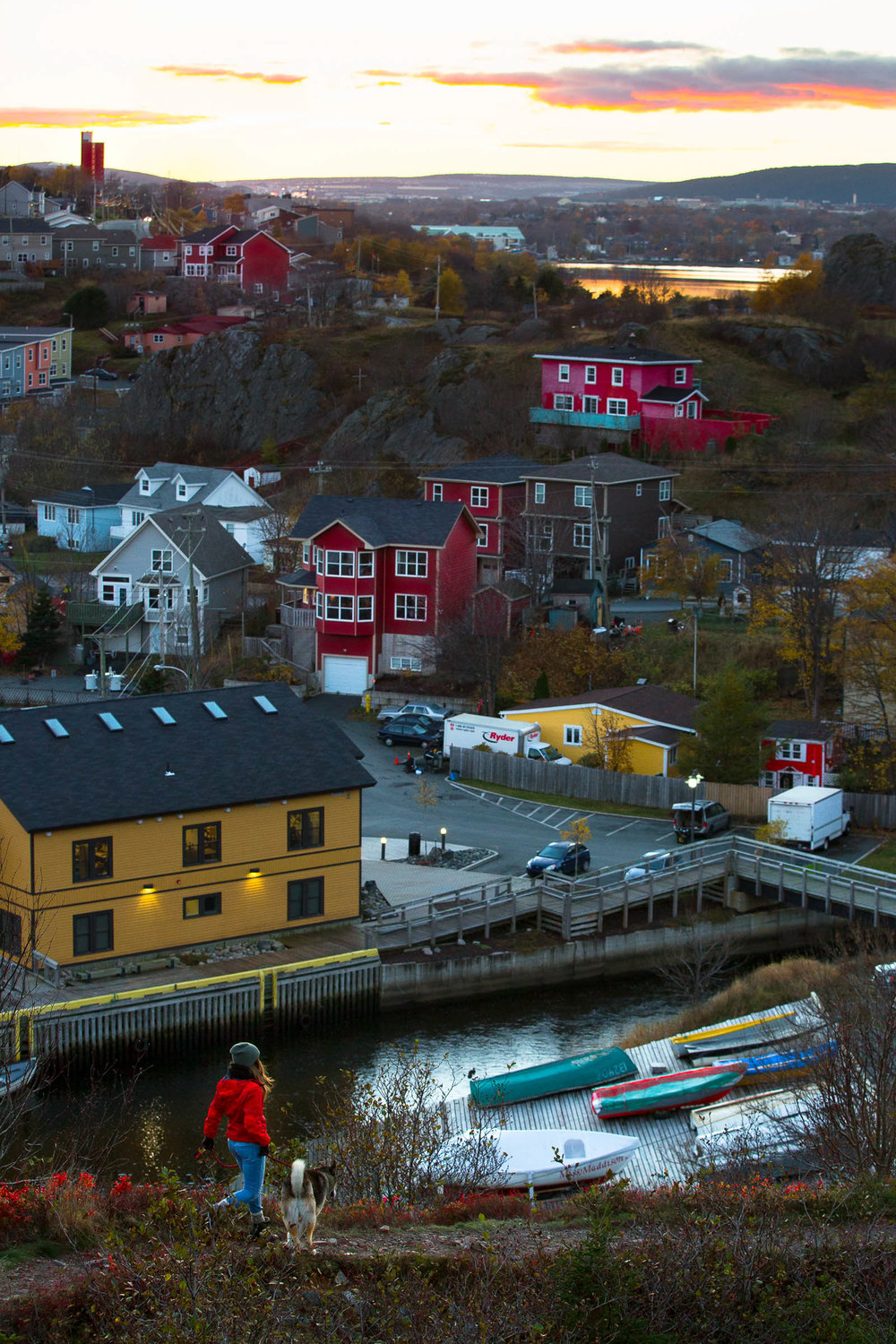 Quidi Vidi Evenings.jpg