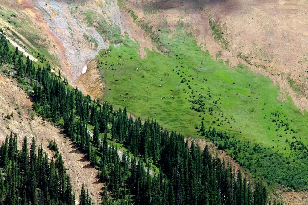 Rockies_2000-01-16_14-36-48_61©MaggieLynch2012.jpg