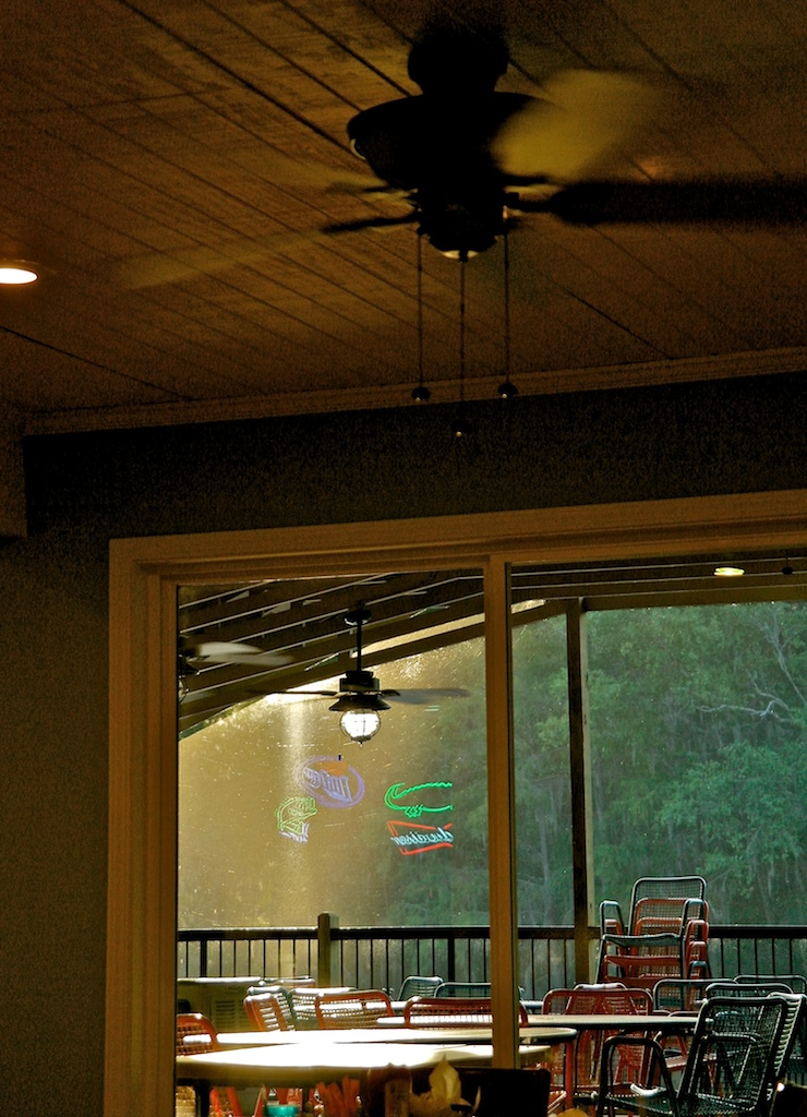Caddo_Lake_2011-06-19_05-38-04__SAM5762©MaggieLynch2011.jpg