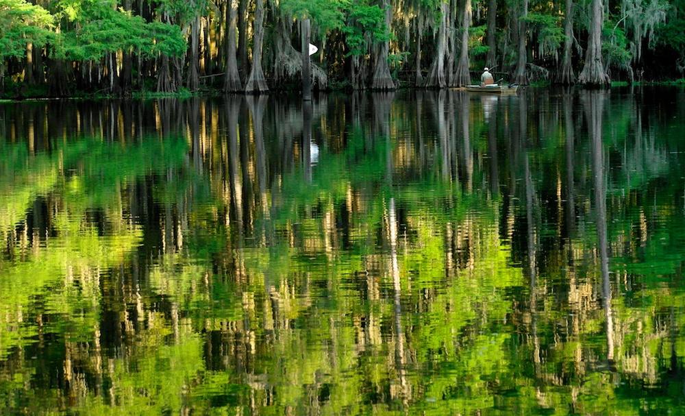 Caddo_Lake_1999-12-31_17-09-06_130©MaggieLynch2012.jpg