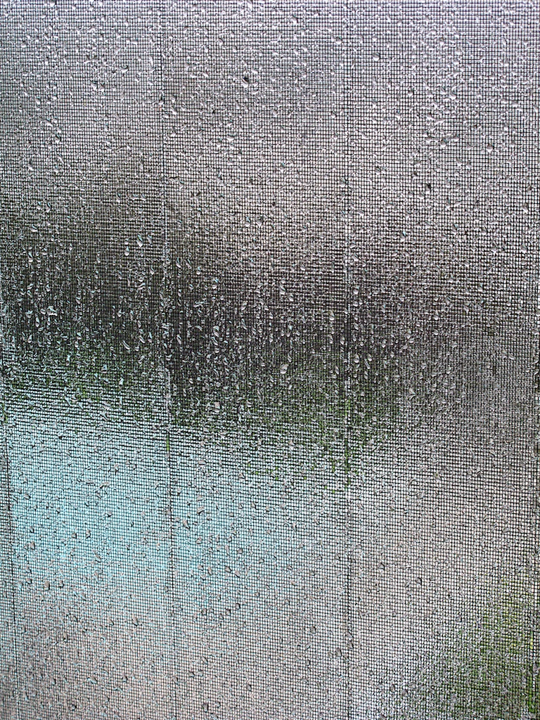 Rainy_screens.jpg