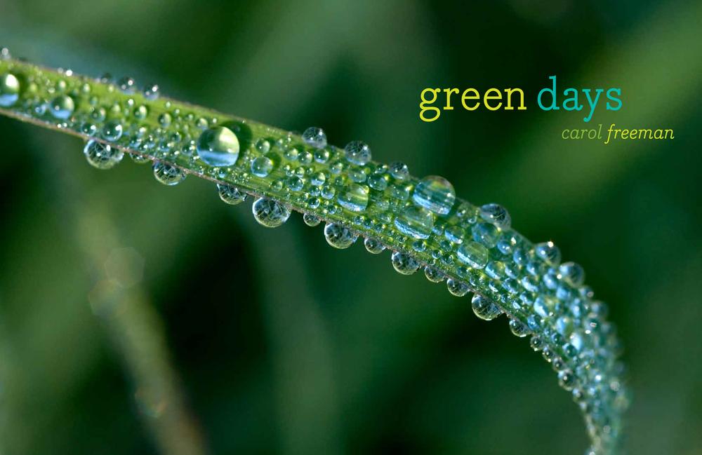 nikon green days spread-1.jpg