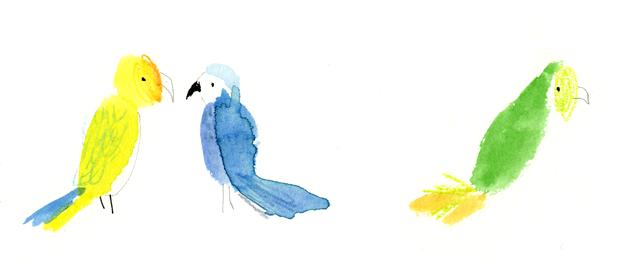 Julia Denos_Spots_Parrots.jpg.png