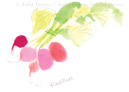 julia denos_spots_radishes.jpg.png