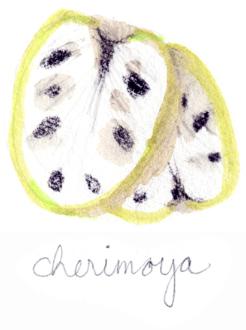 julia denos_cherimoya.png