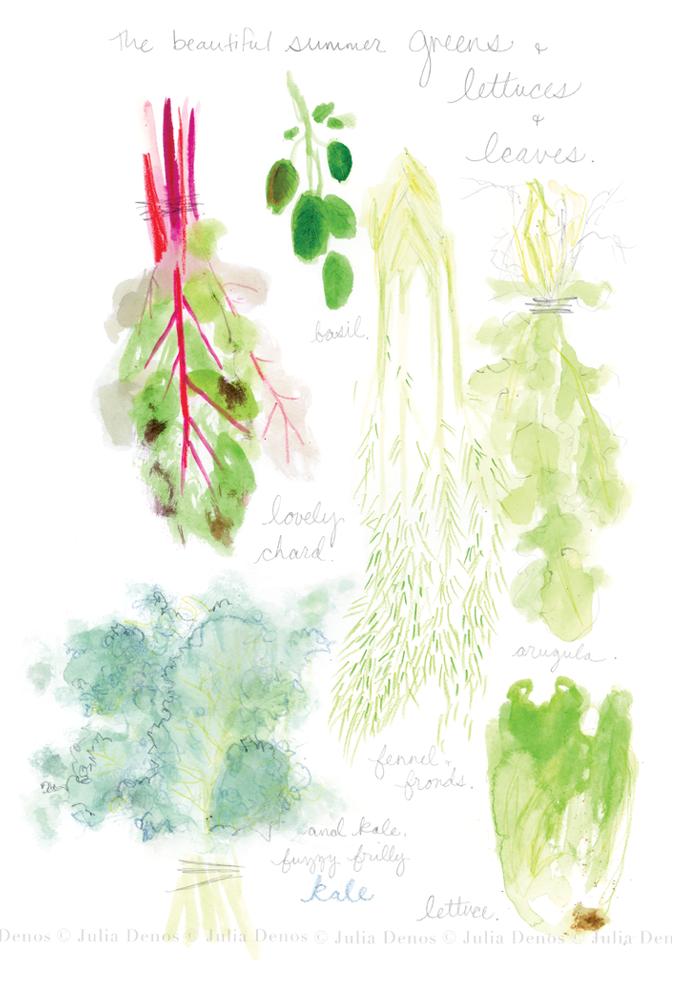 julia denos_spots_lettuce.jpg.png