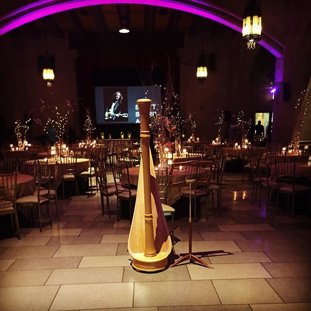 Had a wonderful time @ the Harlem Arts Gala! @harlemartsfest #harlemarts #harlem #nyc #harp #pretty