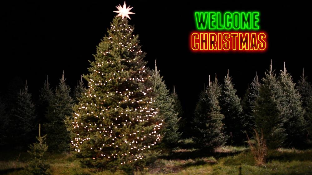 Neon Christmas 2.jpg