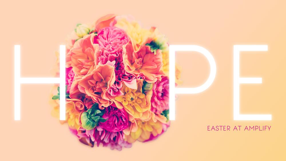 hope bouquet 16x9 amplify.jpg