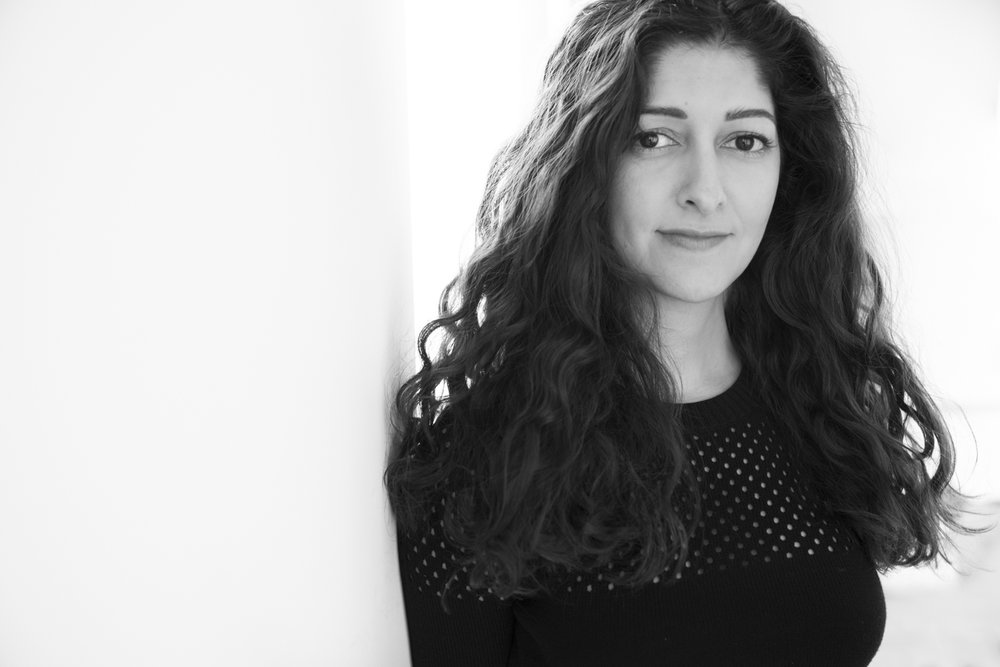 Setareh Sarmardi, Art Buyer