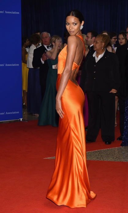 Lais ribeiro in sophie theallet at the White House Correspondents' dinner 2016.jpg