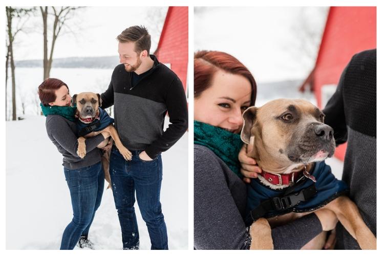 vermont dog portraits outdoor in winter