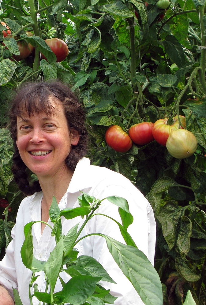 kim frank tomatoes.jpg