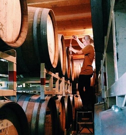 barrel tasting.jpg