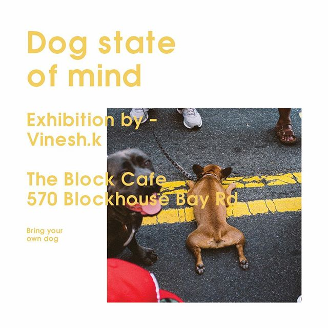 Have some pooch inspired photographs up at @theblockcafenz if you're in the area go check them out and drop some coinage in the @spcacollectionbox - Will be putting on a little dog friendly shin dig at the end of this month so watch this space 🐶